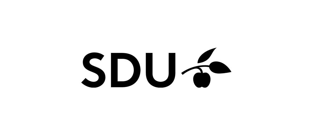 Southern Denmark University
